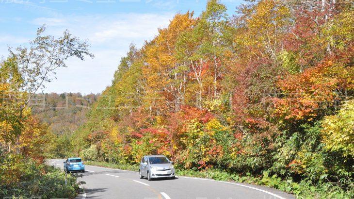 八幡平国立公園の紅葉が見ごろ 蒸の湯でピーク