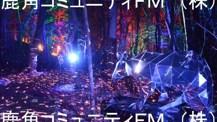 光と音の新「冬物語」が開幕 十和田湖
